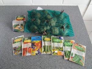 Siemenperunoita ja siemenpusseja kasvimaata varten.